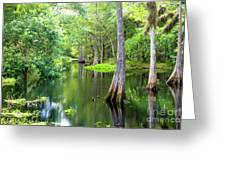 Tropical River 3 Greeting Card