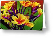 Tropical Warmth Greeting Card