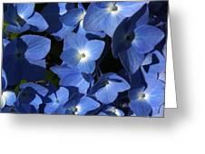 True Blue Greeting Card