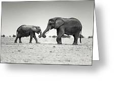 Trunk Pumping Elephants Greeting Card