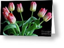 Tulip Bouquet Greeting Card by Tracy Hall