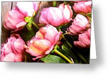 Tulips 3 Greeting Card