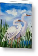 Twin Egrets Greeting Card