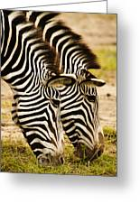 Twins In Stripes Greeting Card