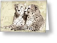 Two Cheetahs Greeting Card