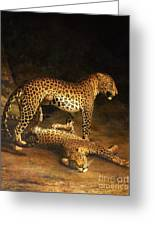 Two Leopards Lying In The Exeter Greeting Card