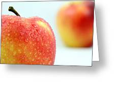 Two Red Gala Apples Greeting Card