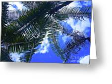 Under The Palms Greeting Card