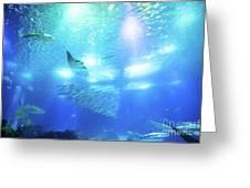 Undersea Deep Background Greeting Card