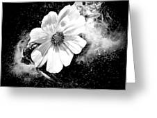 Universal Floral Greeting Card