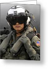 U.s. Navy Aviation Warfare Systems Greeting Card