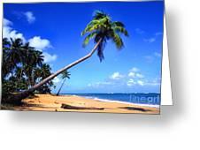 Vacia Talega Beach Greeting Card