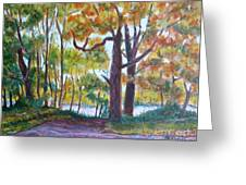 View From My Driveway Greeting Card