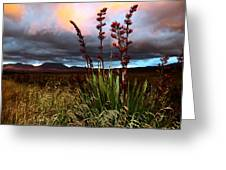 Volcanic Plateau Sunset Greeting Card