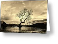Wanaka Tree - New Zealand Greeting Card