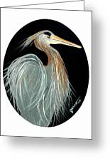 Ward Egret Greeting Card