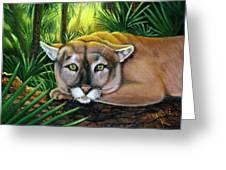 Watching  Florida Panther Greeting Card
