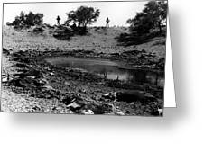 Water Hole Dead Cattle Cowboys  Drought Tohono O'odham Indian Reservation Near Sells Az 1969 Greeting Card
