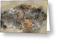 Watercolour Painting Of Beautiful Greylag Goose Anser Anser In W Greeting Card