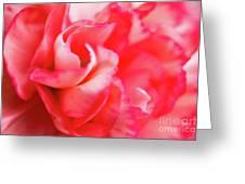Waves Of Pink Greeting Card