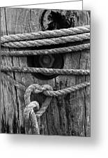Weathered Rope Greeting Card
