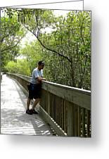 Weedon Island Boardwalk  Greeting Card