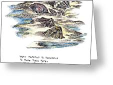 What Happens To Seashells Greeting Card