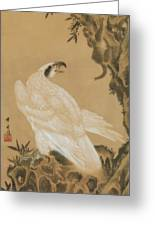 White Eagle Eyeing A Mountain Lion Greeting Card