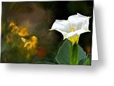 Awakening Flower Greeting Card