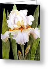White Iris In The Garden Greeting Card