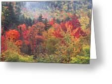 White Mountain Foliage Greeting Card