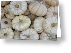 White Pumpkins Greeting Card