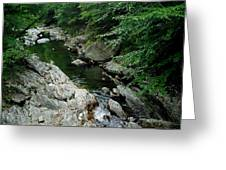 Mad River Greeting Card