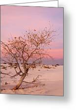 White Sands Sunset 2 Greeting Card