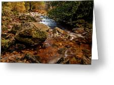 Wicklow Stream Greeting Card