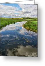 Wide Open.. Greeting Card