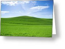 Windows Xp Greeting Card