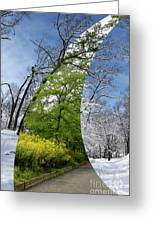 Winter And Summer Greeting Card