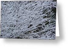 Winter At Dusk Greeting Card
