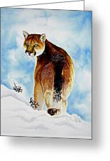 Winter Cougar Greeting Card