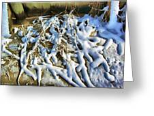 Winter Design Greeting Card