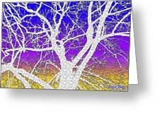 Winter Dusk Greeting Card
