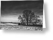 Winter Fields Greeting Card