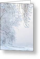 Winter Landscape With Snow-covered Trees Greeting Card