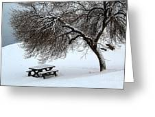 Winter Picnic Greeting Card