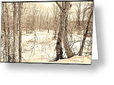 Winter Scene, Montgomery County, Pennsylvania Greeting Card