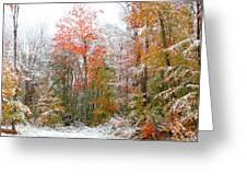 Winterfall  Greeting Card