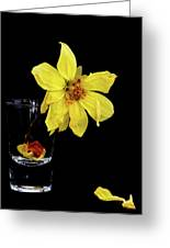Withered Lifeless Dahlia Flower Greeting Card