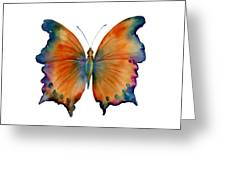1 Wizard Butterfly Greeting Card