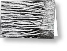 Wool Scarf Greeting Card